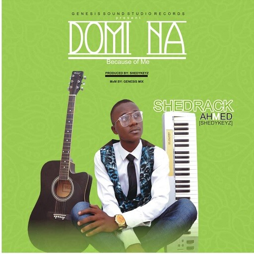 Download Domi Na by Shedykeyz